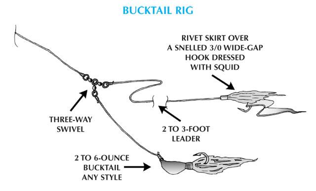 Fluke - Bucktail Rig