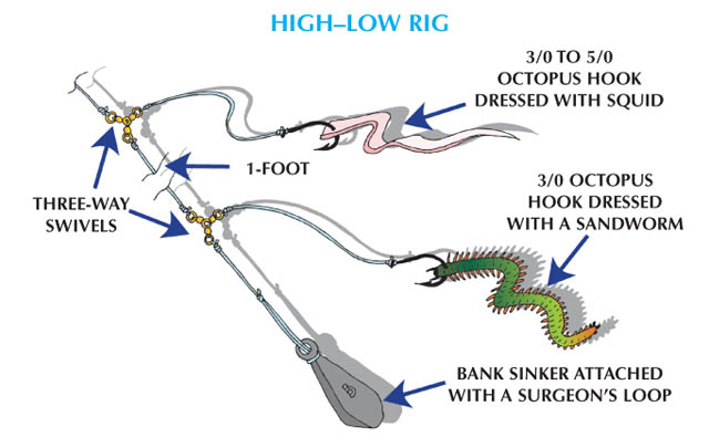 Weakfish - High-Low Rig